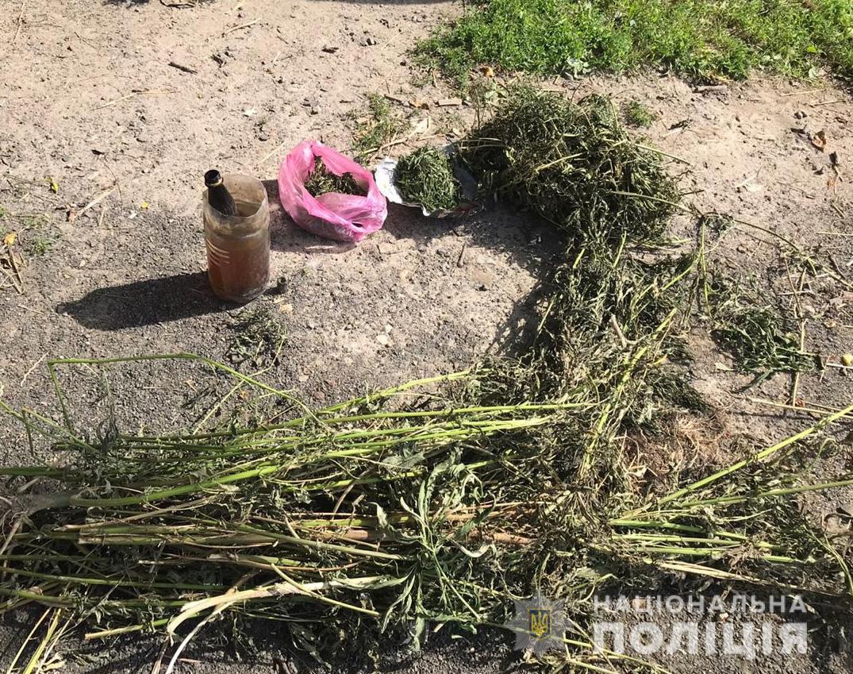 Іваничівщина, Ківерцівщина, Маневиччина та Луцьк: де поліцейські припинили наркозлочини цієї доби