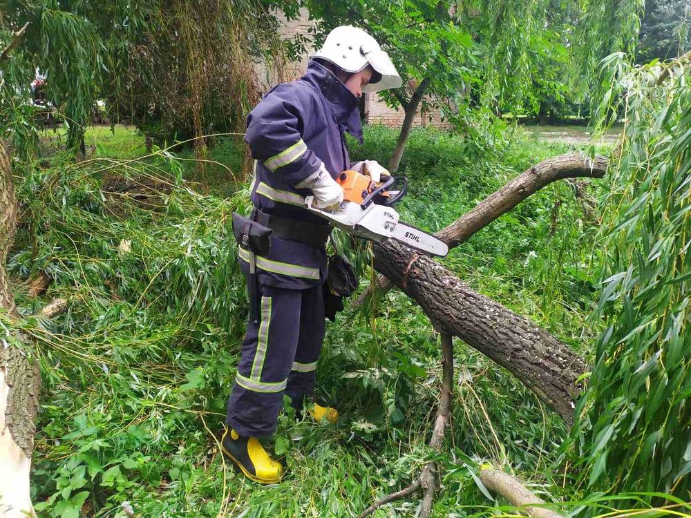 Пошкоджене негодою дерево на Волині могло впасти на котельню