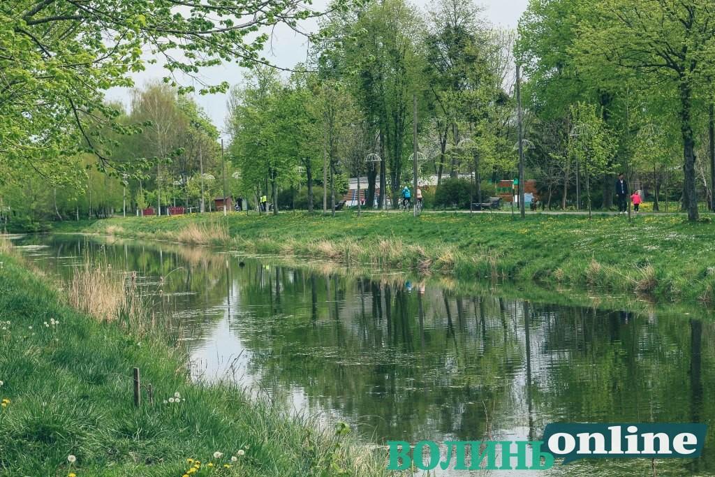 Поляки консультують працівників Луцькради щодо зеленого господарства