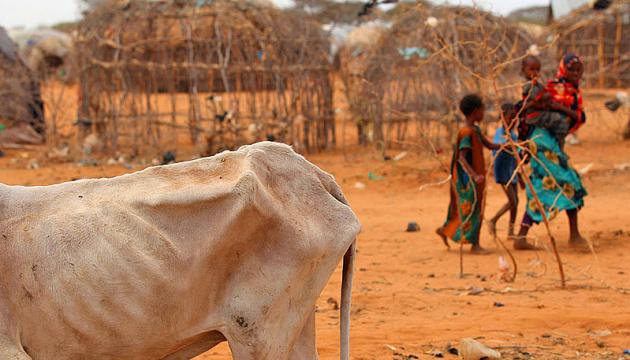 Голод унаслідок пандемії може вбити більше людей, ніж коронавірус