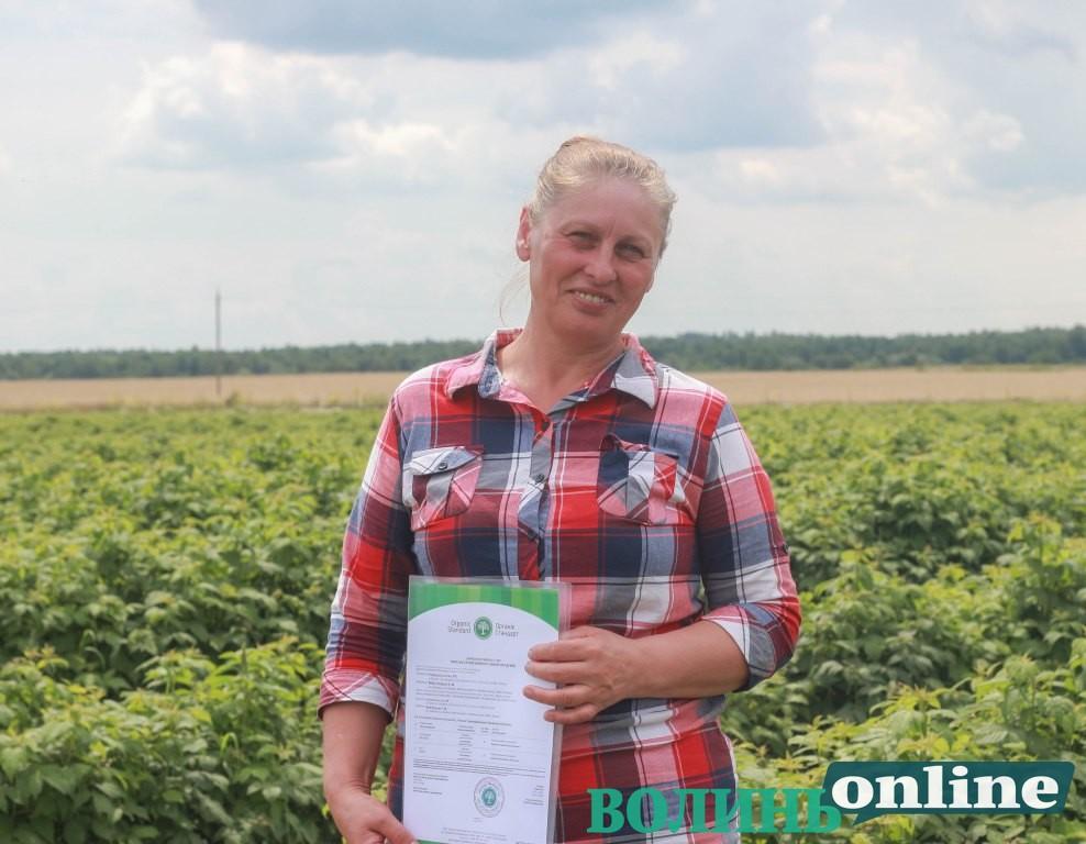 #БізнеСильні: Галина Пушкар вирощує органічні ягоди на Ківерцівщині