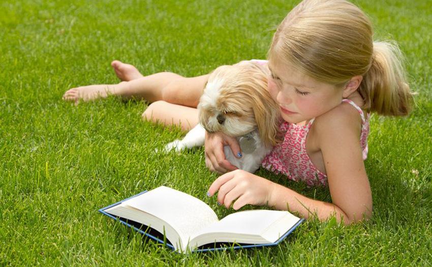 У Луцьку бібліотека пропонує для дітей читальну залу просто неба