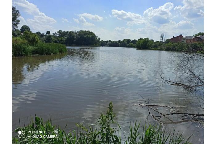Ще одне джерело смороду у Луцьку виявили на Кічкарівських ставках