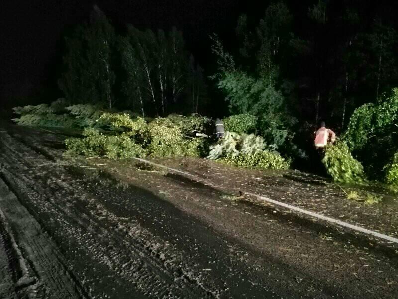 На Волині розчищали траси від повалених внаслідок негоди дерев