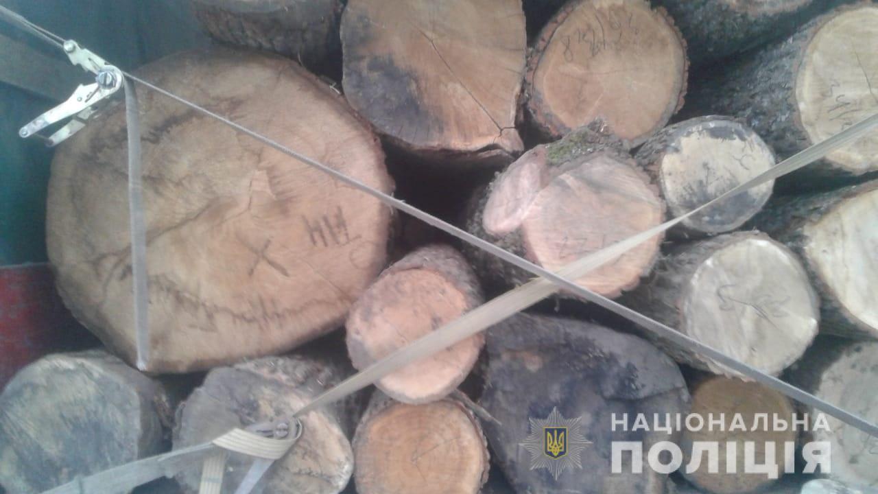 На Волині поліцейські затримали автомобіль з деревиною без маркування та документів