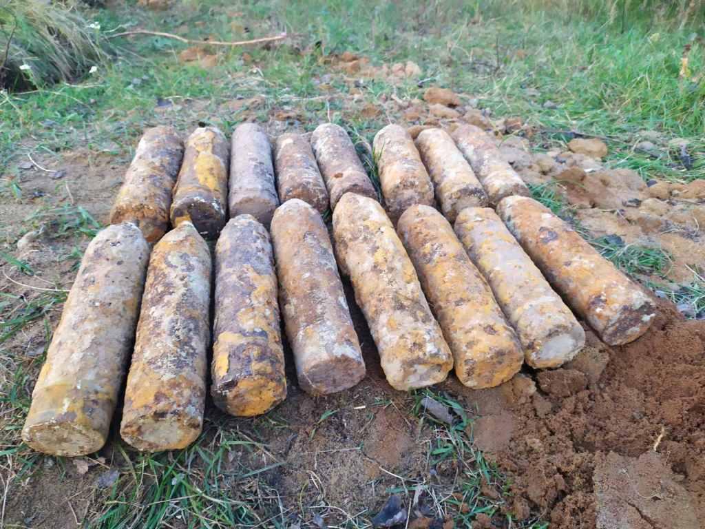 Волинянин, який збирав гриби, виявив небезпечну знахідку