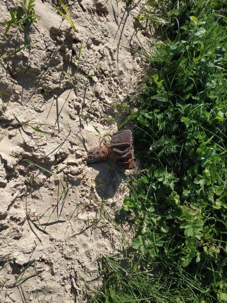На Волині грибники виявили небезпечну знахідку