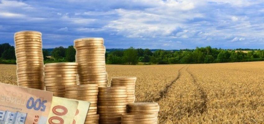 Місцеві бюджети Волині отримали 291 мільйон гривень плати за землю