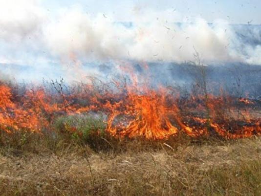 На Волині за добу ліквідували вісім пожеж