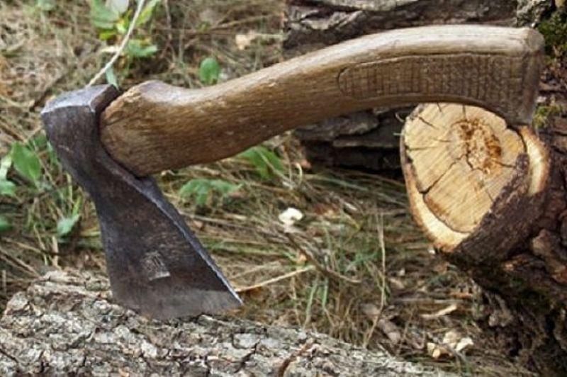 Волинянина затримали за самовільну порубку лісу