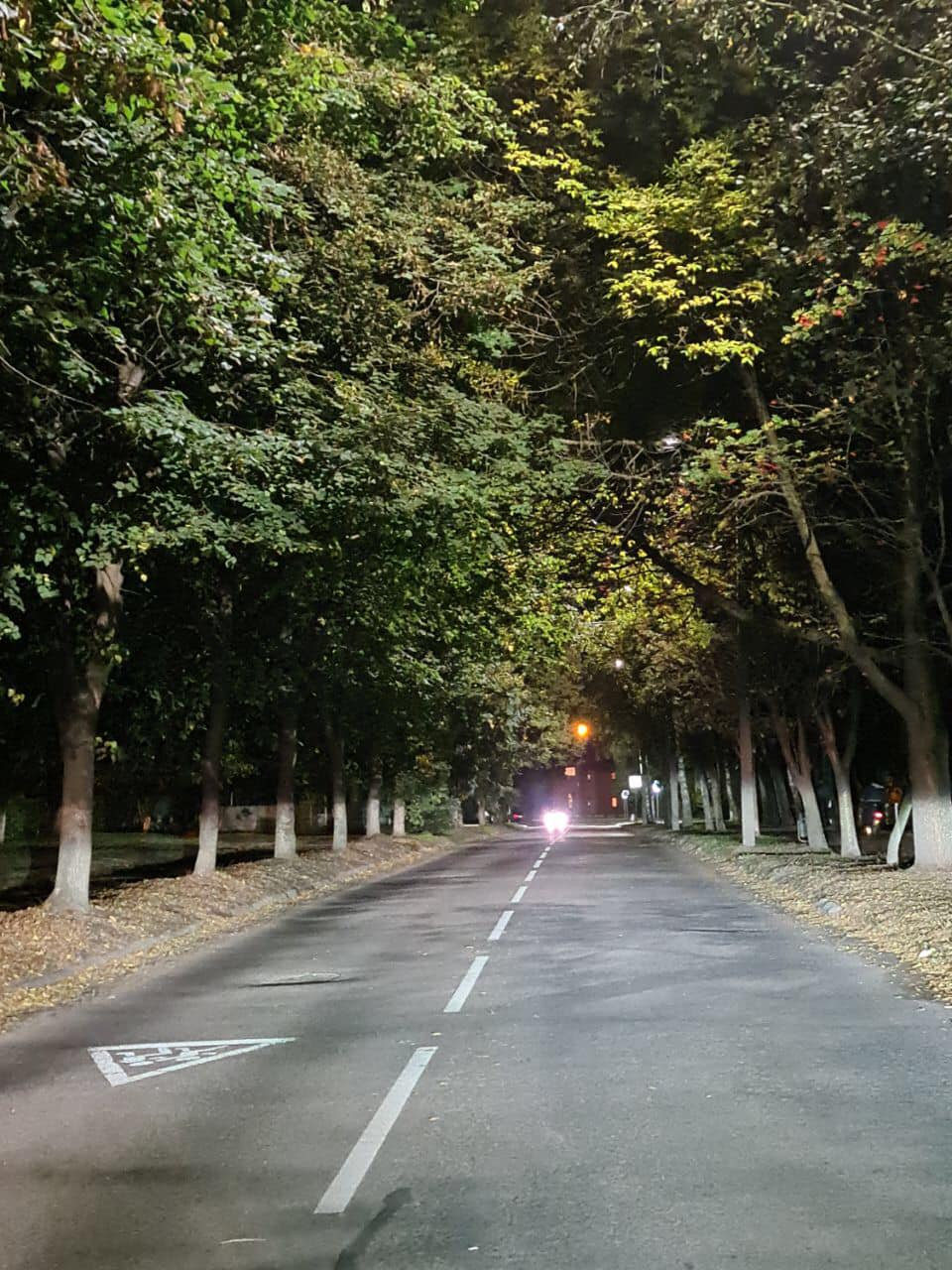У Луцьку встановили 177 нових LED-світильників на чотирьох вулицях