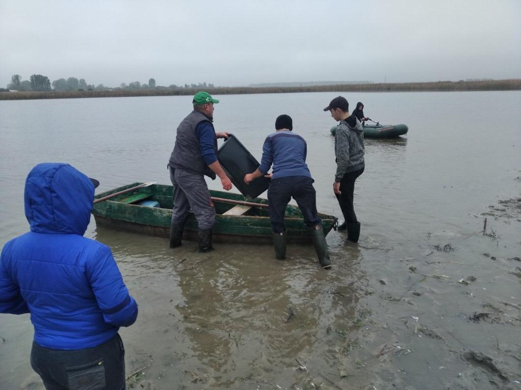 У річку на Волині вселили понад 700 кілограмів риби