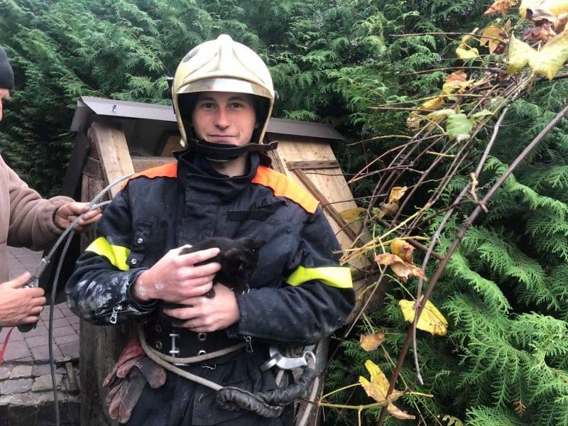 На Волині бійці ДСНС врятували з 15-метрової криниці кошеня
