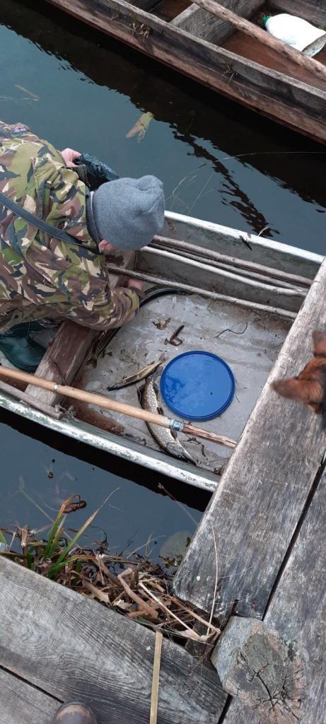 Протягом тижня на Волині викрили 25 порушень правил рибальства