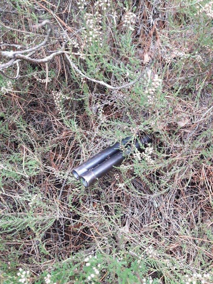 На Волині браконьєр «загубив» у лісі рушницю