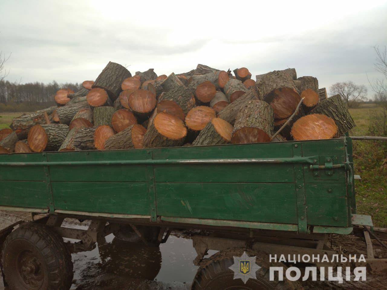 У Ковельському районі поліцейські вилучили незаконний ліс