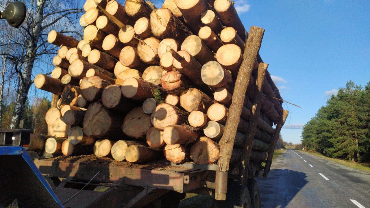 На Любешівщині вилучили незаконну лісопродукцію