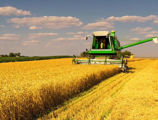 На Волині знизилося виробництво сільськогосподарської продукції