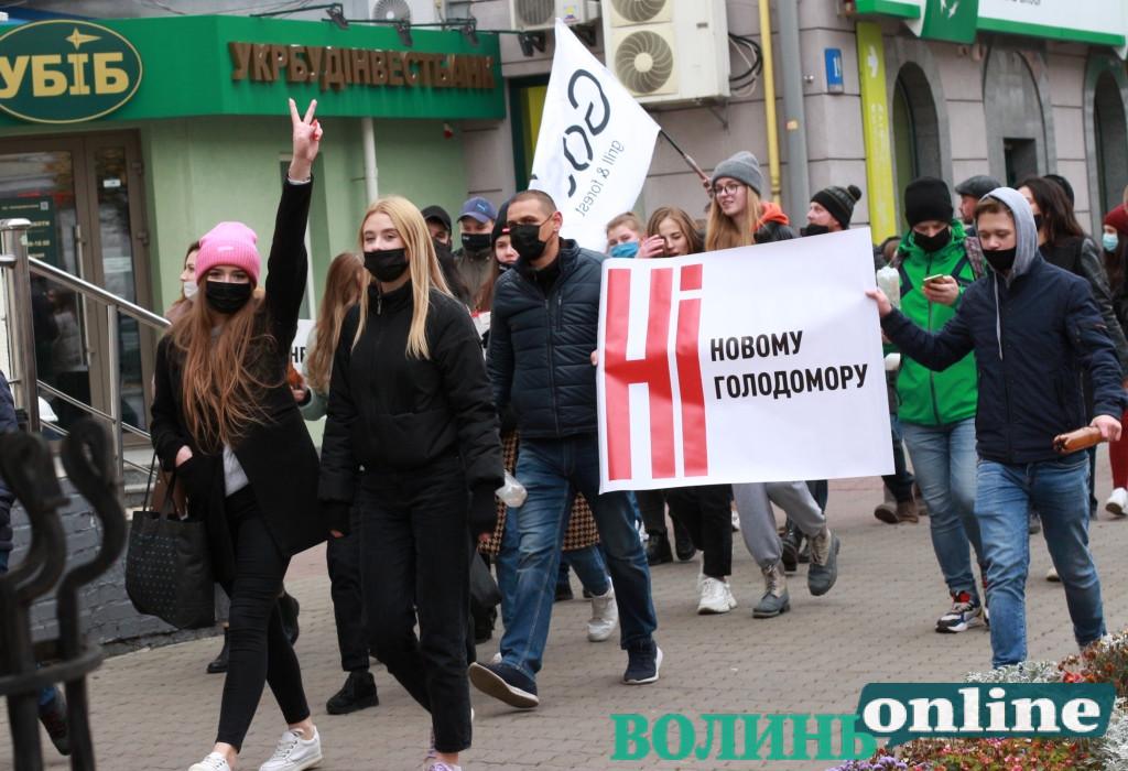 «Дайте працювати»: як підприємці у Луцьку мітингували проти карантину вихідного дня