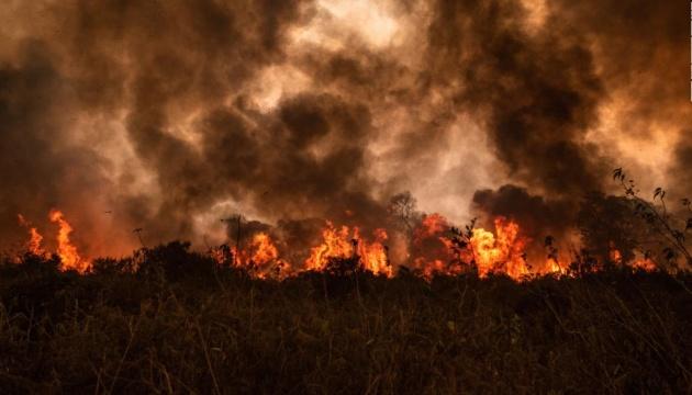 У Бразилії вигоріла третина найбільшого в світі болота Пантанал