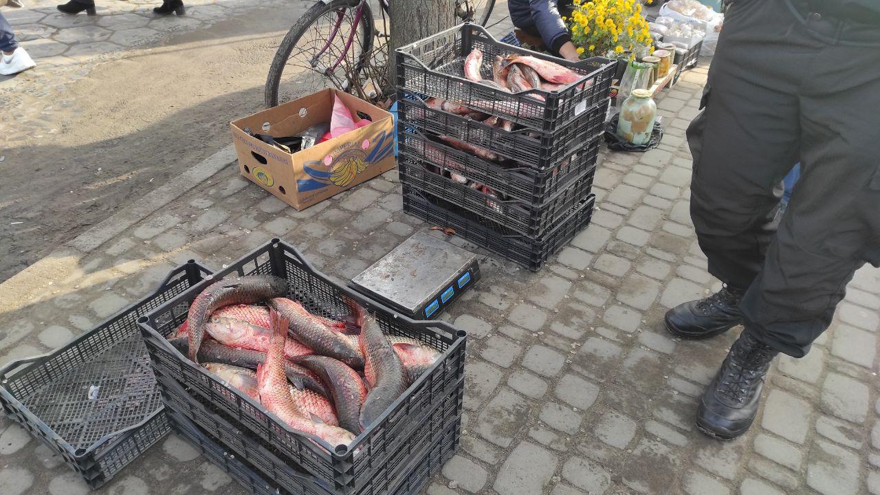 На ринку міста на Волині викрили незаконний збут риби