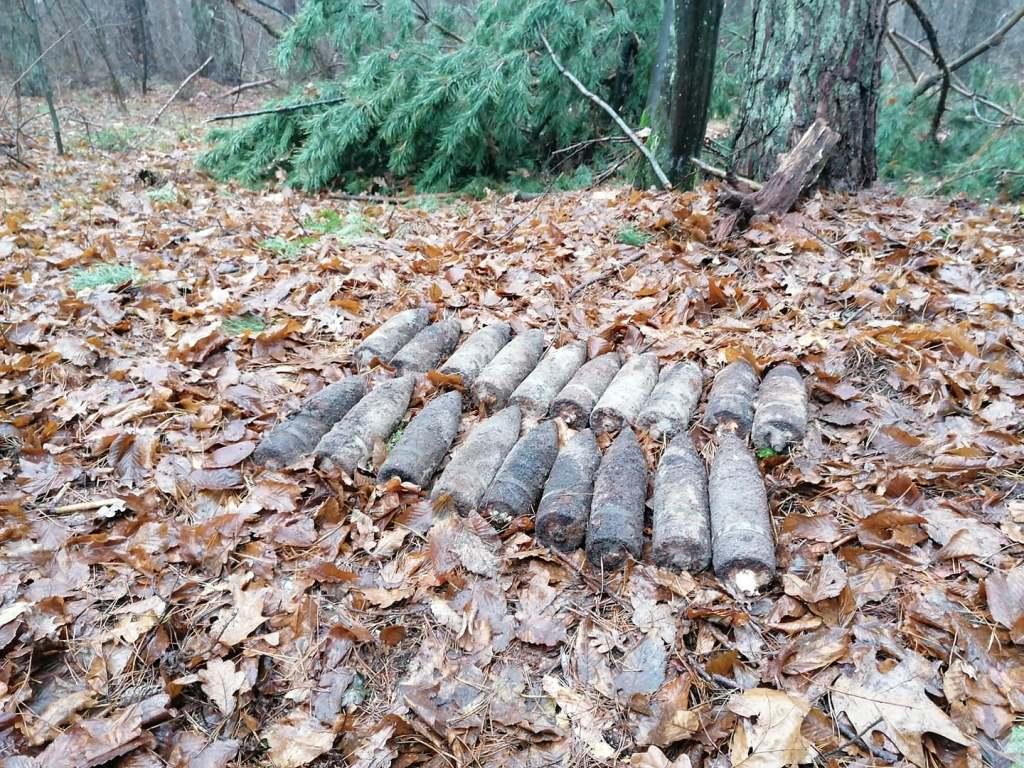 У лісі на Волині виявили 19 артснарядів