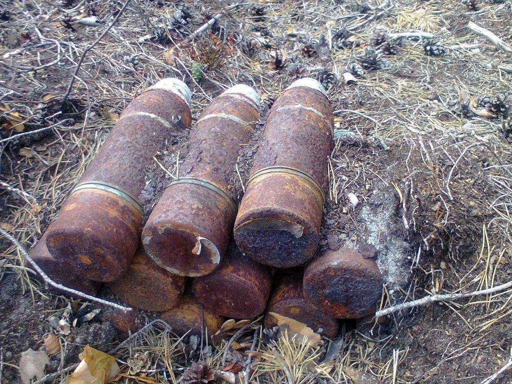 На Волині знешкодили 15 боєприпасів часів Другої світової війни