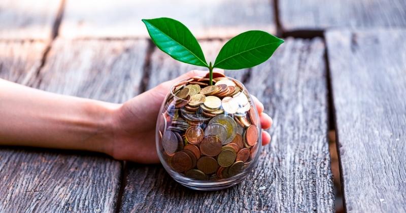 В обласному екологічному фонді Волині наступного року може бути шість мільйонів гривень
