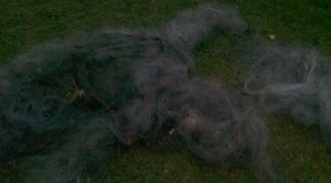 На озері Домашнє на Волині вилучили безгосподарські сітки