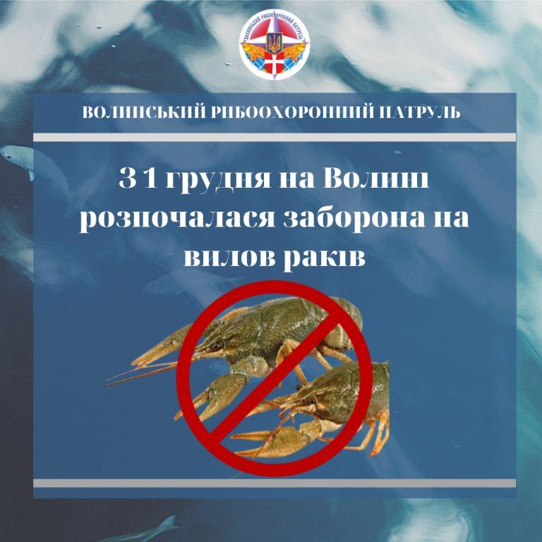 На Волині з 1 грудня діє заборона на вилов раків