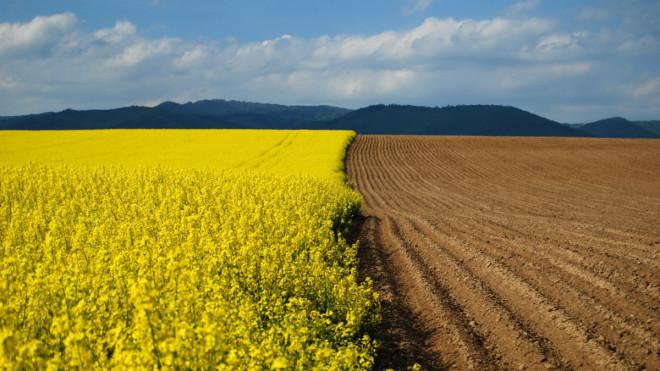 На Волині провели аудит земель сільськогосподарського призначення