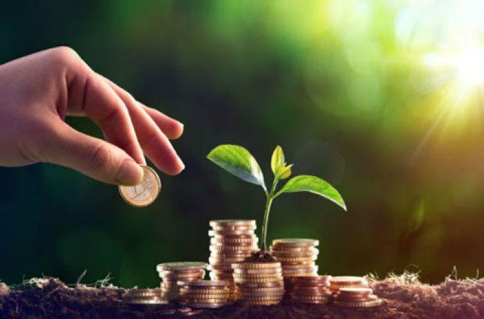 Місцеві громади Волині торік отримали на 2,2 відсотка більше плати за землю, ніж у 2019 році
