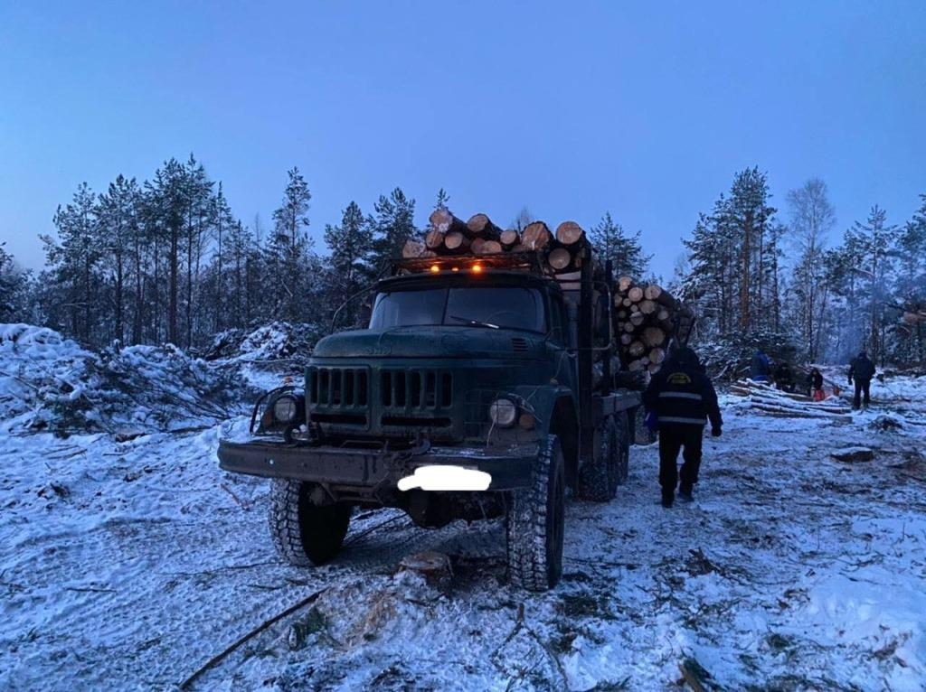 На Ковельщині арештували вантажівку із незаконно зрубаною деревиною