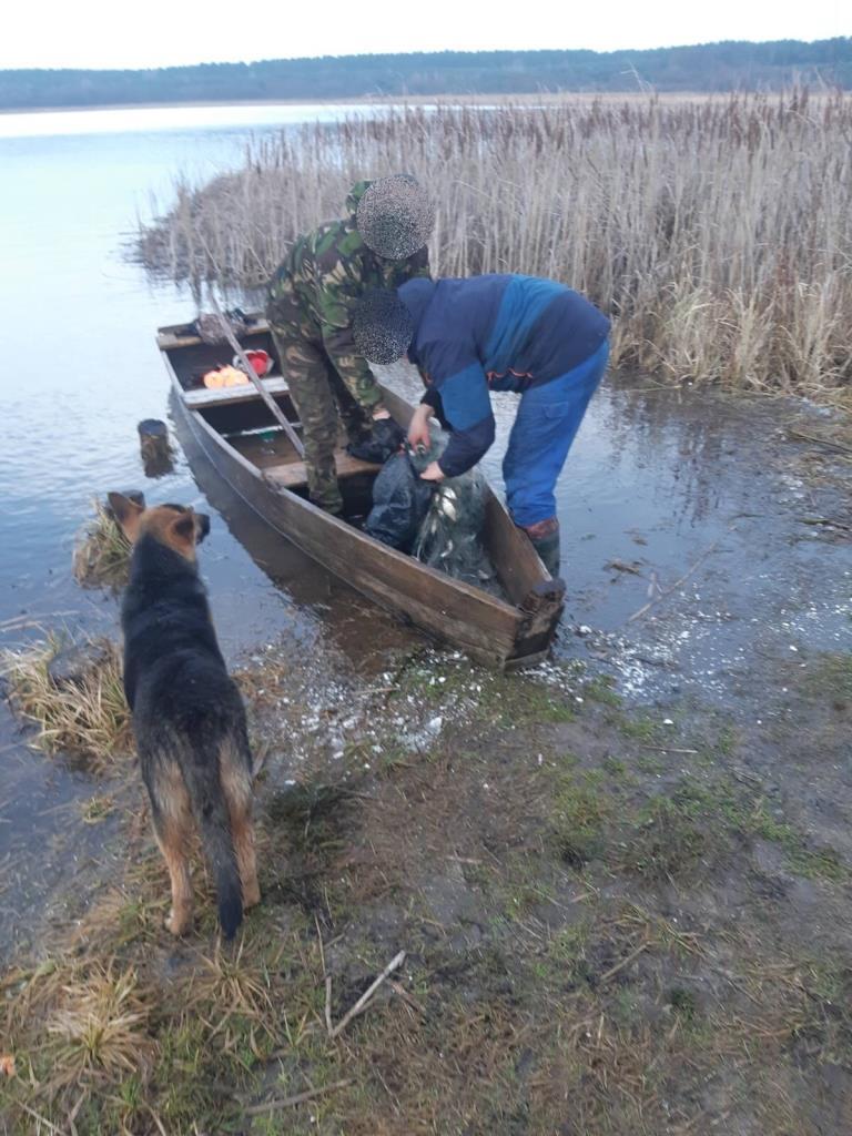 Рибоохоронний патруль Волині за тиждень зафіксував 20 правопорушень