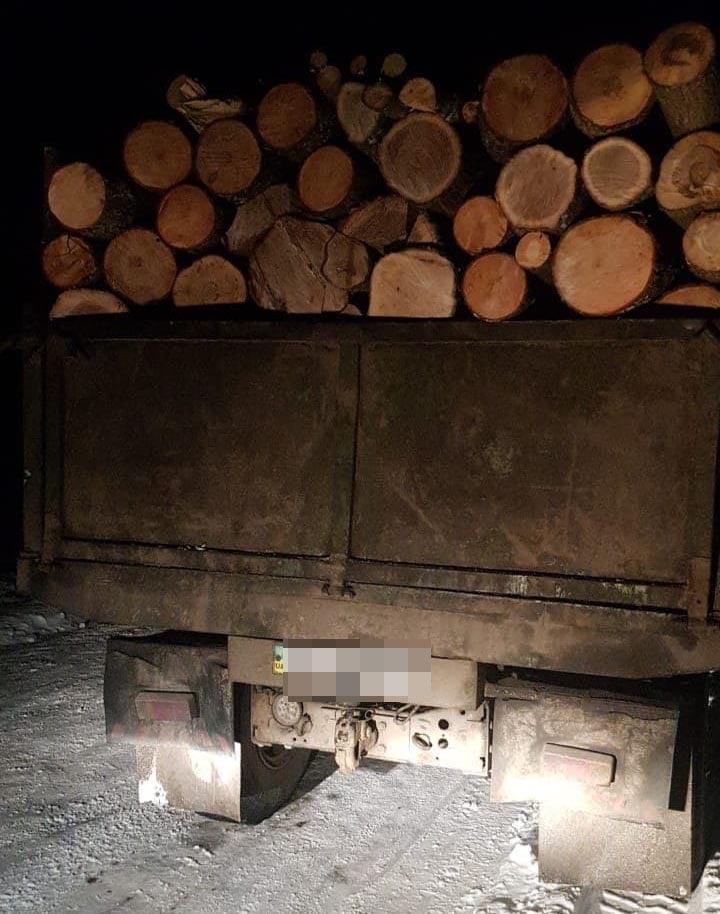 На Ківерцівщині виявили крадія лісу
