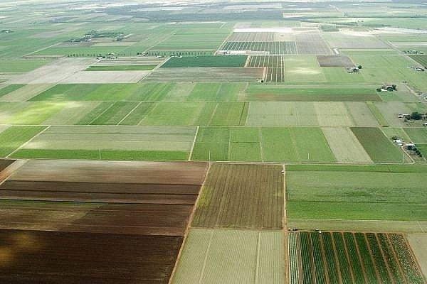 ГУ Держгеокадастру додатково передасть громадам Волині 9,5 тисячі гектарів земель