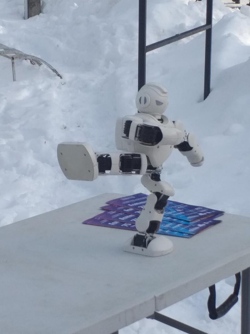 «Сніжна зима»: на одній з локацій у Луцьку дітей розважали роботи