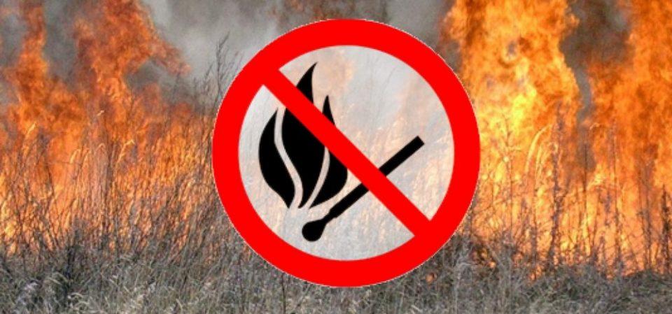 Жителів Володимир-Волинської громади закликають не спалювати сухостій
