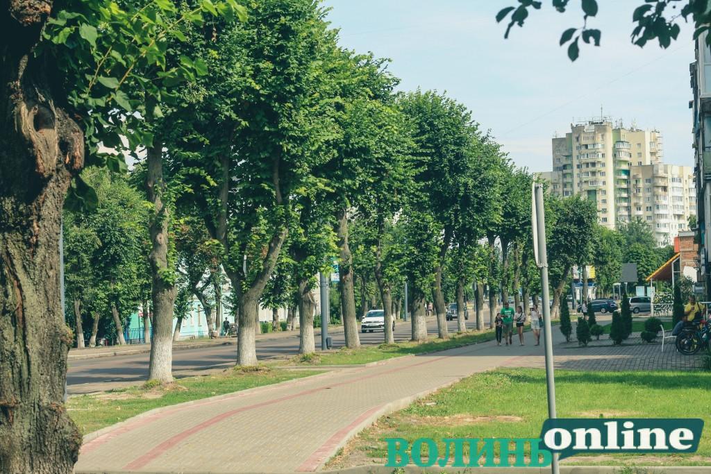 У Луцьку обговорюватимуть капітальний ремонт проспекту Волі