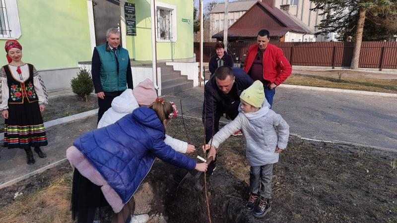 Біля Ківерцівського краєзнавчого музею висадили «Лесину грушу»