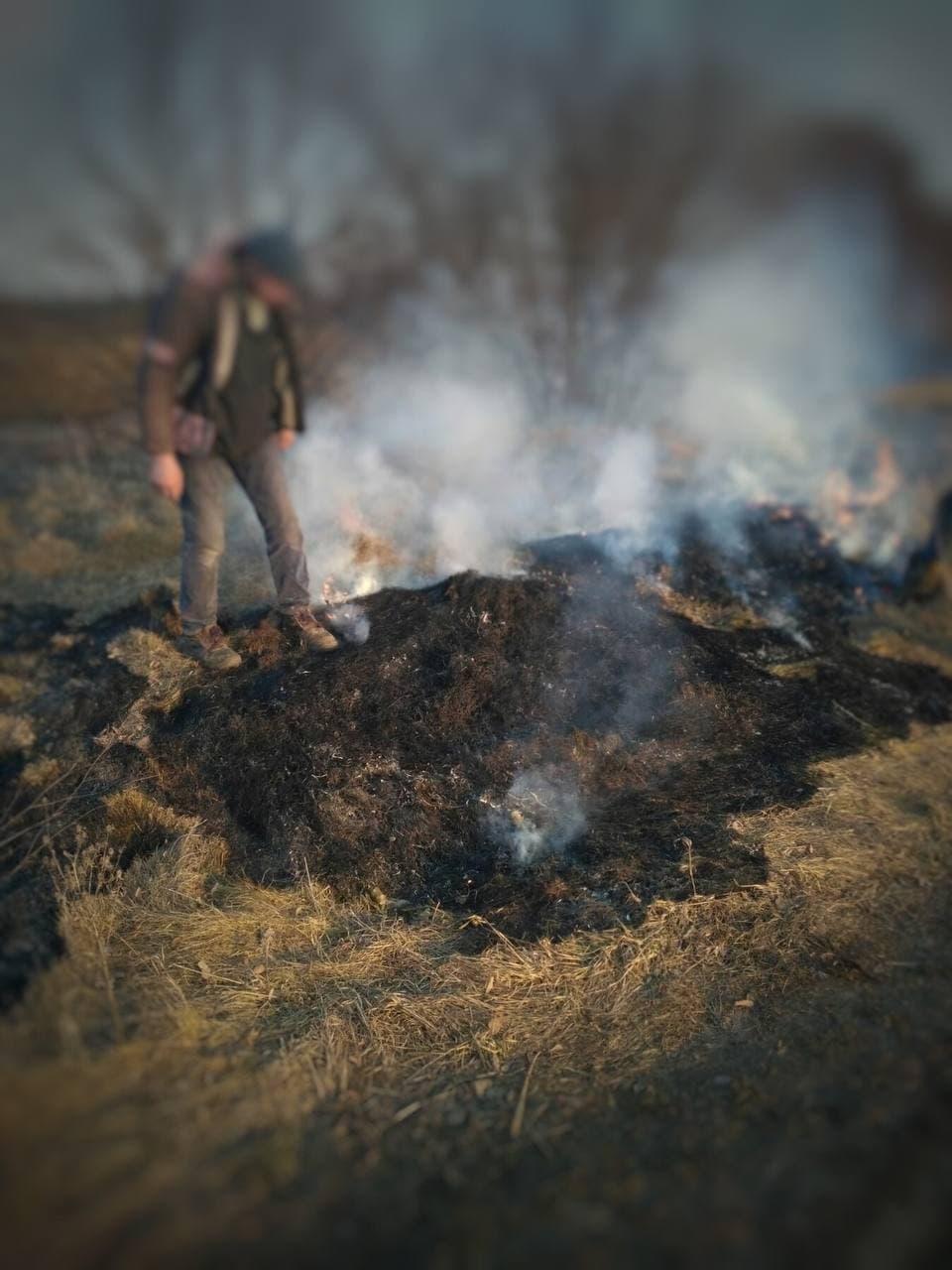 Екоінспектори оштрафували волинянина за спалювання сухої рослинності