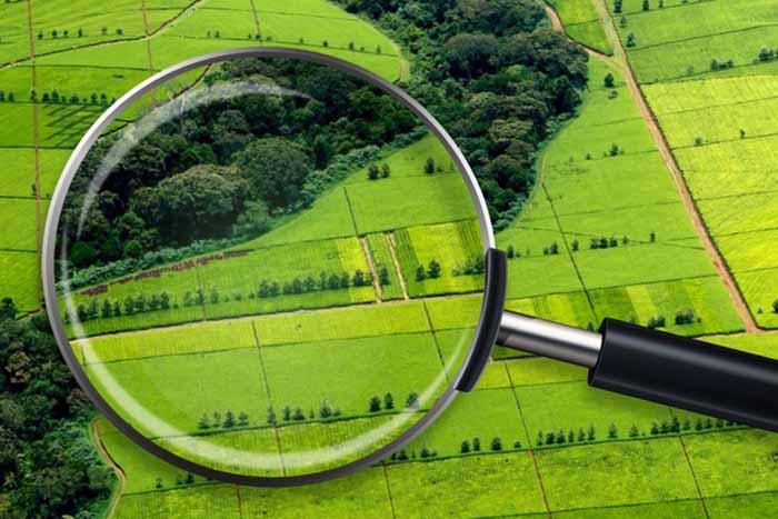 Нововолинській громаді передали понад 77 га землі