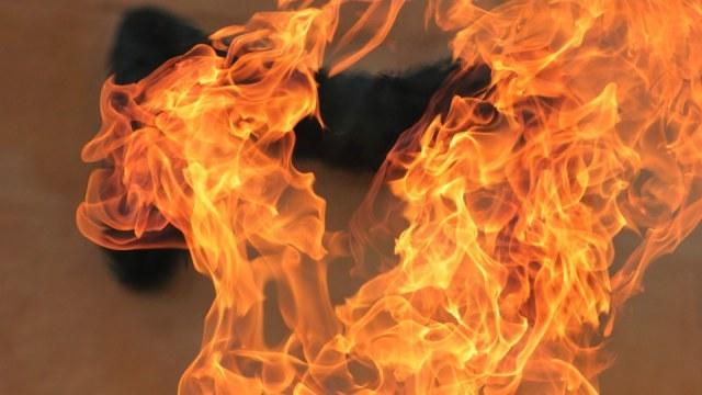 На Турійщині ліквідували пожежу сухої трави