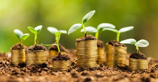 На Волині фіксують ріст сплати екологічного податку