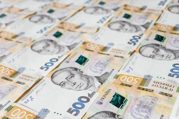 Волинянка повернула державі понад 100 тисяч гривень одержаної шахрайським шляхом соціальної допомоги