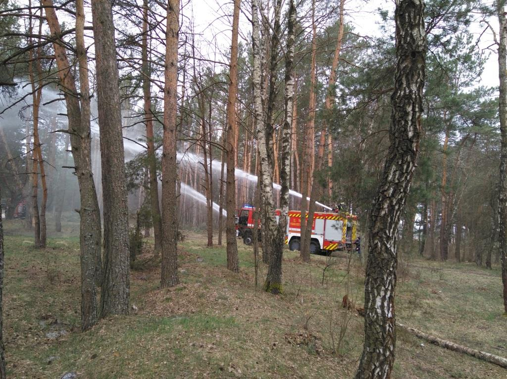 Волинські рятувальники та лісівники тренувалися гасити лісові пожежі