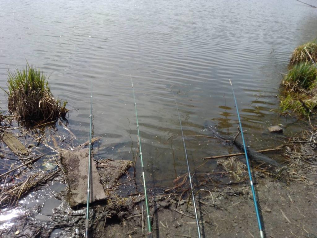 За тиждень на Волині виявили 29 порушень правил рибальства