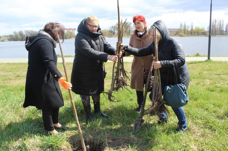 У Ковелі в пам'ять про колишню голову «Союзу Українок» Аллу Полякову висадили павловнії