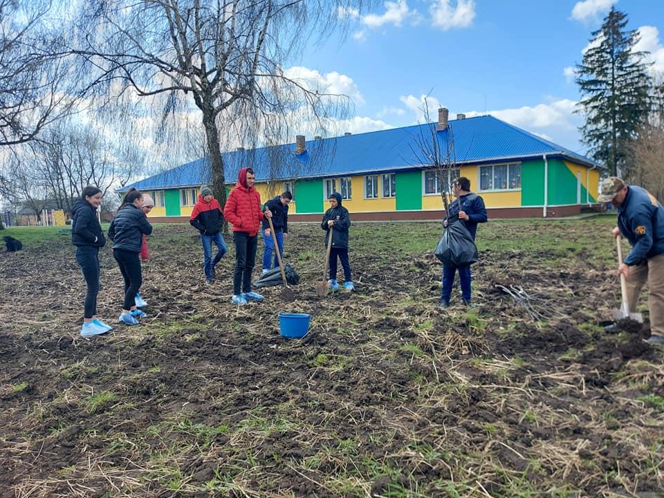 У гімназії поблизу Луцька заклали фруктовий сад