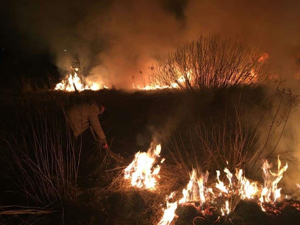 За тиждень на Волині ліквідували 15 пожеж сухої трави
